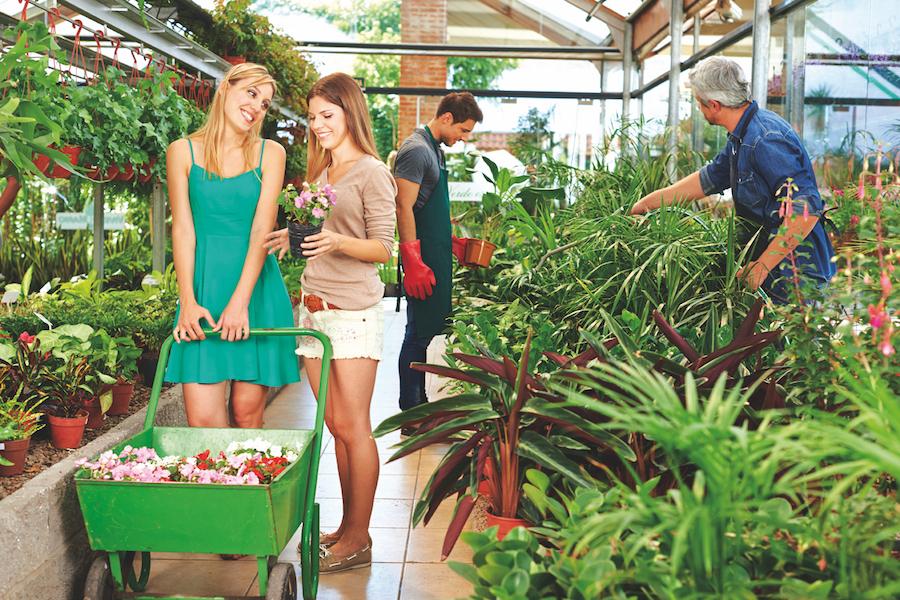 Anwendungsbeispiel Trennstation zur Bewässerung in Gärtnerei